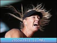 http://i1.imageban.ru/out/2012/12/11/e8c4ee8e580ed188bec5413d42ff1212.jpg