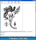 http://i1.imageban.ru/out/2013/03/30/3d877e2ed9fb94ef0b82d4ed2a7fc837.jpg