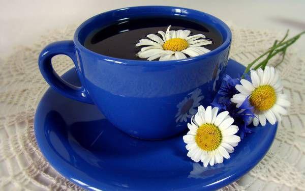 Ромашки с чаем 2.jpg