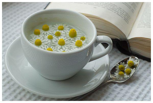 93 Ромашки с чаем и книга.jpg