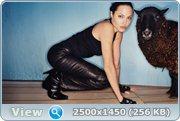 http://i1.imageban.ru/out/2013/04/09/f34a956d35776e4b62281b7323e35207.jpg