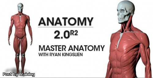 ZBrushWorkshops: Anatomy 2.0 R2 - Master Anatomy with Ryan Kingslien