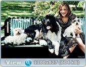 http://i1.imageban.ru/out/2013/08/19/f00ed1d827af114e951cb63a1e8505e7.jpg