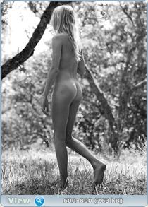 http://i1.imageban.ru/out/2013/08/21/a8bbe07e029e964768ed0afa9945ece9.jpg