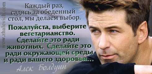 http://i1.imageban.ru/out/2013/10/10/037c4eb76a1dfa1e6bba5e6da9d45aad.jpg