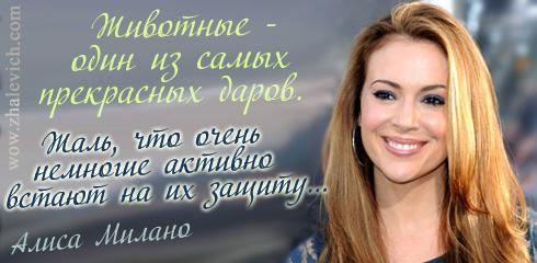 http://i1.imageban.ru/out/2013/10/10/316224085200da66f1e00c157af9de31.jpg