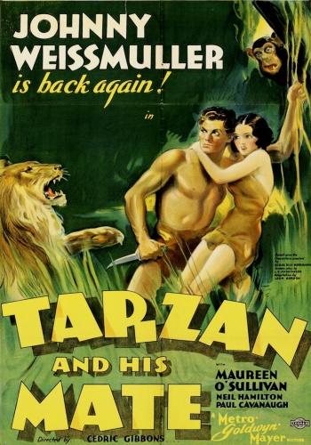 Тарзан и его подруга / Tarzan and His Mate (Седрик Гиббонс / Cedric Gibbons) [1934, США, Приключения,DVDRip] MVO + original + sub (rus)