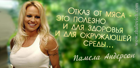 http://i1.imageban.ru/out/2013/10/10/afed61d00230b32d50fb7f300657ad24.jpg