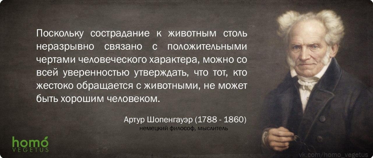 Артур Шопенгауер.jpg