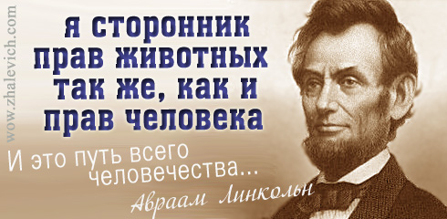 https://i1.imageban.ru/out/2013/10/11/3426deb30133a77ee6ba1731ab018a06.jpg