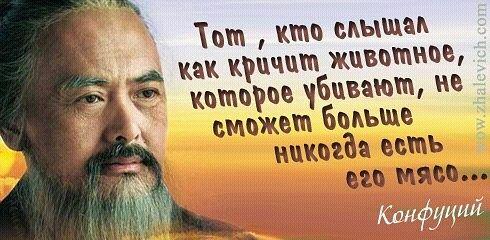 https://i1.imageban.ru/out/2013/10/11/54eef21587ea1ad9306459e35f1eae3b.jpg