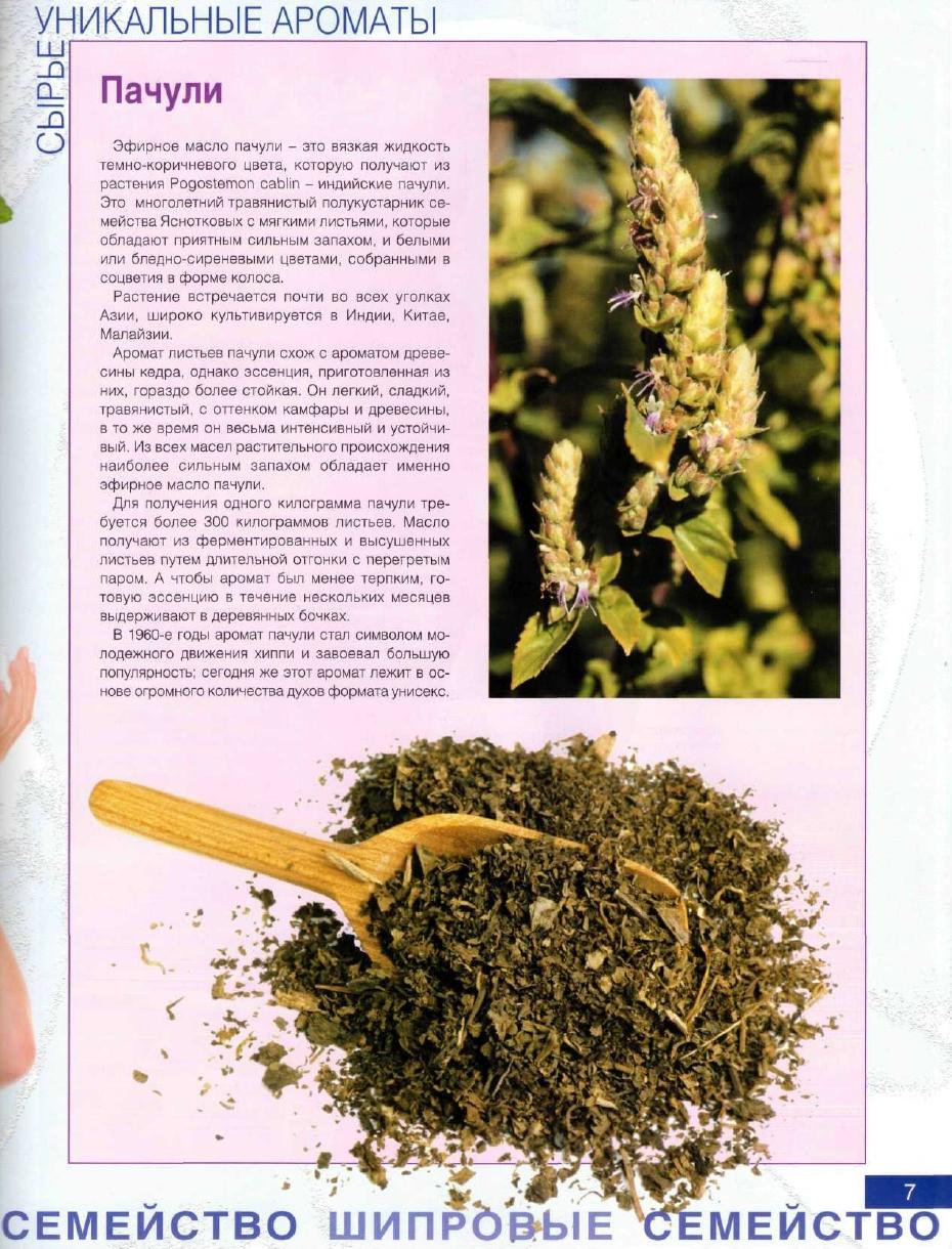 http://i1.imageban.ru/out/2013/10/22/a90deb1af33642c192a25c6e4bed8354.jpg