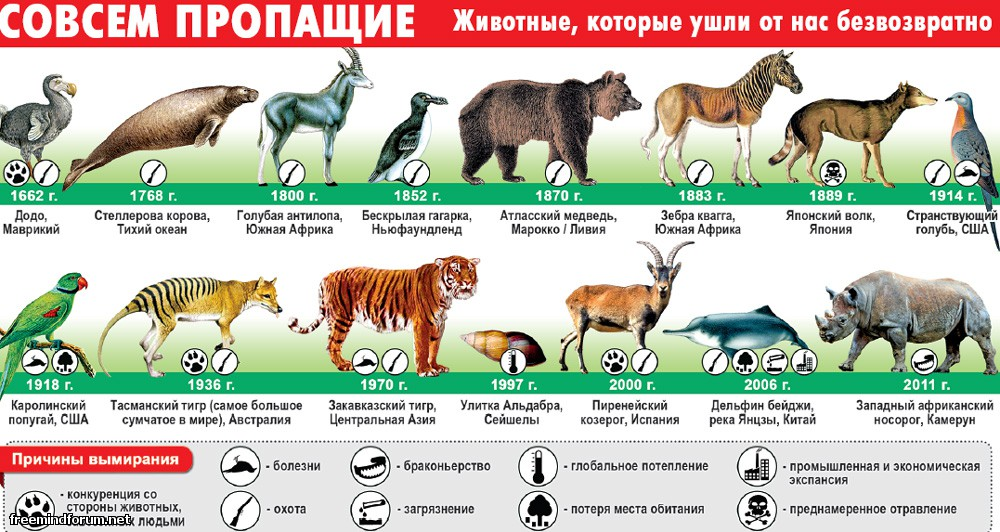 http://i1.imageban.ru/out/2013/11/25/6eef4858dbc3ac09f4e569e4c9eb6bbc.jpg
