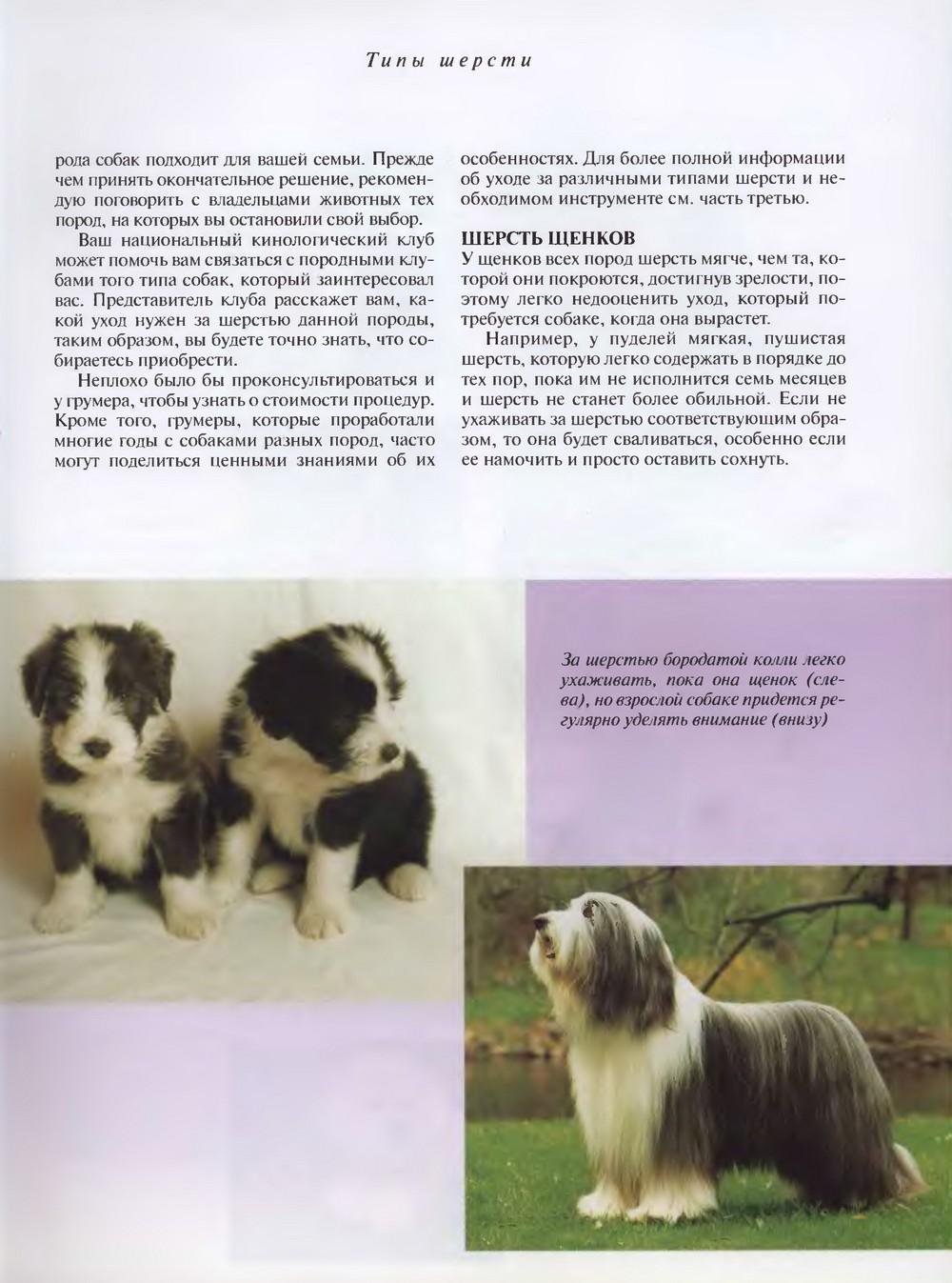 http://i1.imageban.ru/out/2013/11/29/26aa40c0d5acd9cd833fc57c17190865.jpg
