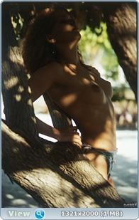 http://i1.imageban.ru/out/2013/12/14/cdd46091ed0f74aa691d4791d20ee72b.jpg