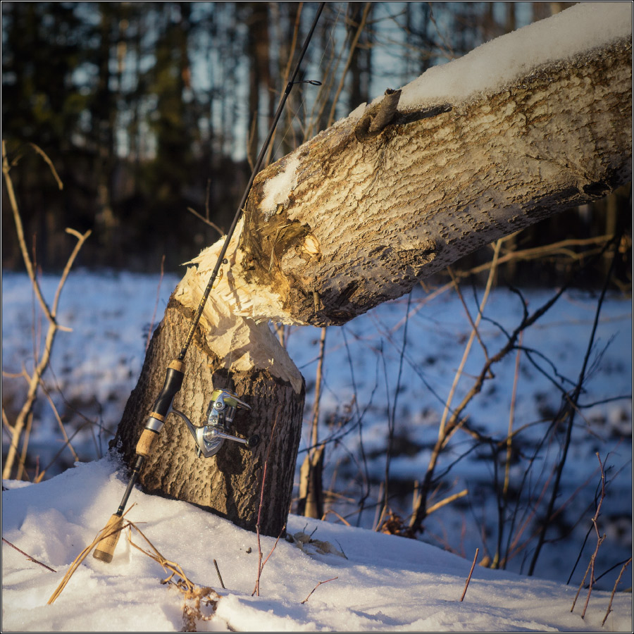 http://i1.imageban.ru/out/2013/12/15/b3438686a081cc6fc3cf6d860f98f231.jpg