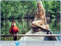 http://i1.imageban.ru/out/2014/01/06/67956056dd3b4760acd41e6e20d175e8.jpg