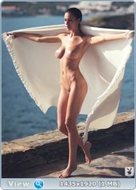 http://i1.imageban.ru/out/2014/01/06/d38909a0de7e8870c6dff508e1f50fa1.jpg