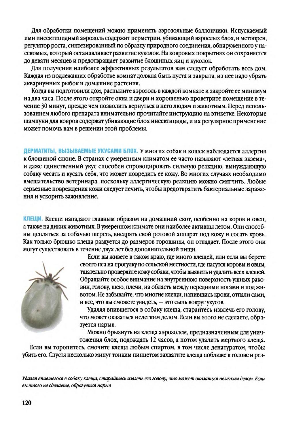 http://i1.imageban.ru/out/2014/01/18/d7e7e19740b8322685aa628c96e22113.jpg