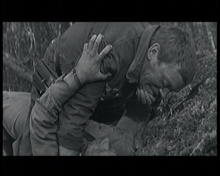 А зори здесь тихие (2 серии из 2) 1972 DVD-9 | Лицензия
