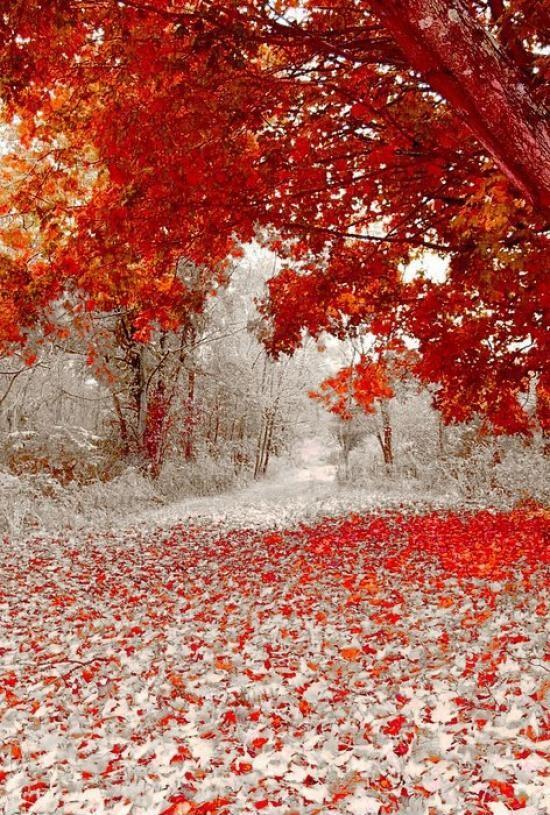 Встреча осени и зимы 1