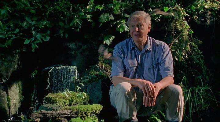 BBC. Аттенборо. 60 лет с дикой природой / BBC. Attenborough: 60 Years in the Wild (1-3 серии из 3) (2012) BDRip