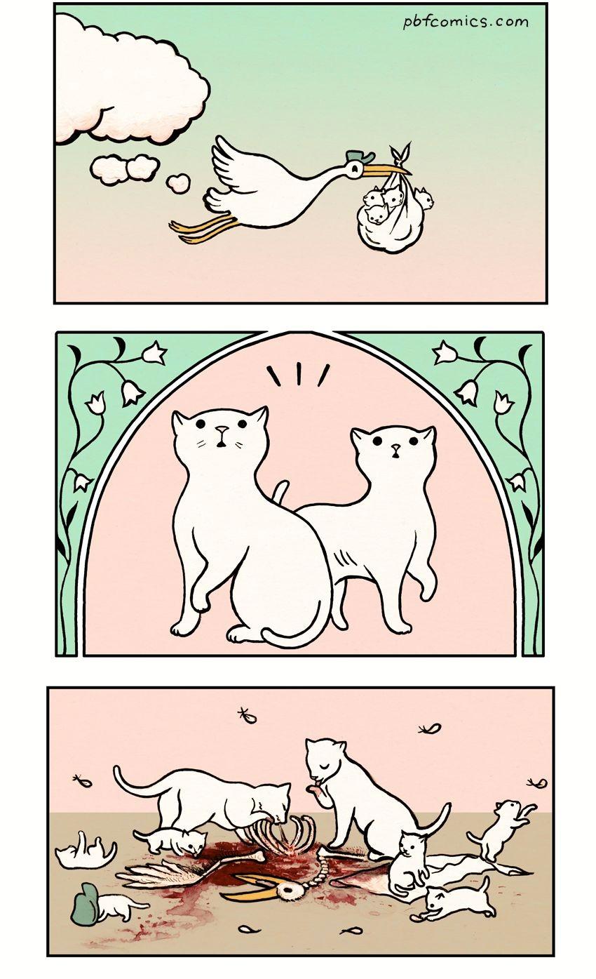 Аисты не любят приносить котят