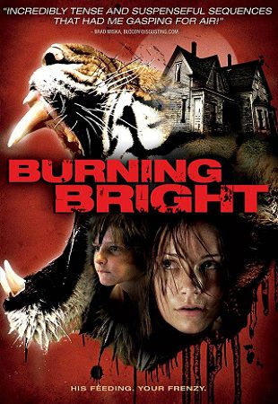 Во власти тигра / Burning Bright (2010) HDRip / 748 MB