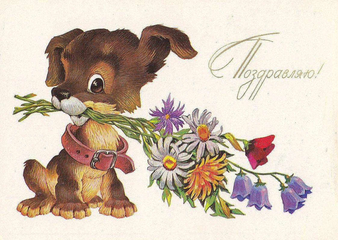 http://i1.imageban.ru/out/2015/03/17/2b3ca6227e4361a61b28135695f3c20d.jpg