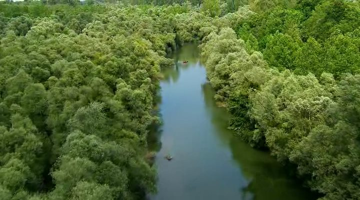 Золото Рейна - лица одной реки / Rheingold: Gesichter eines Flusses (2014) HDRip