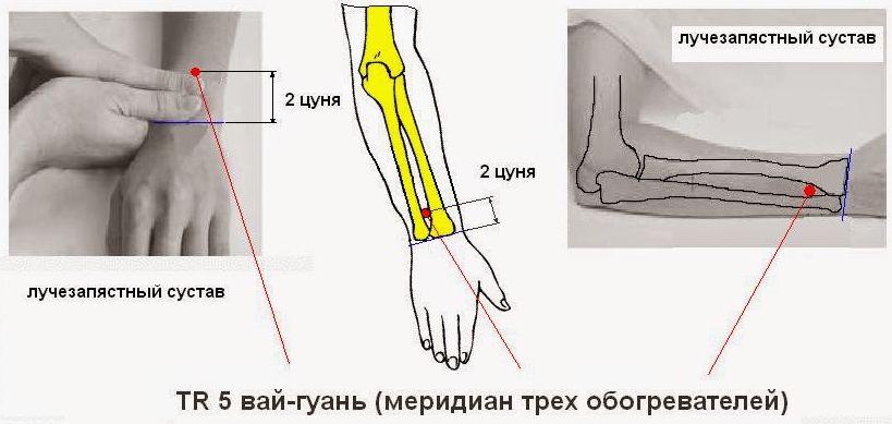 http://i1.imageban.ru/out/2015/04/26/5607c908c49bf2e99f8e9c54af2d70a4.jpg
