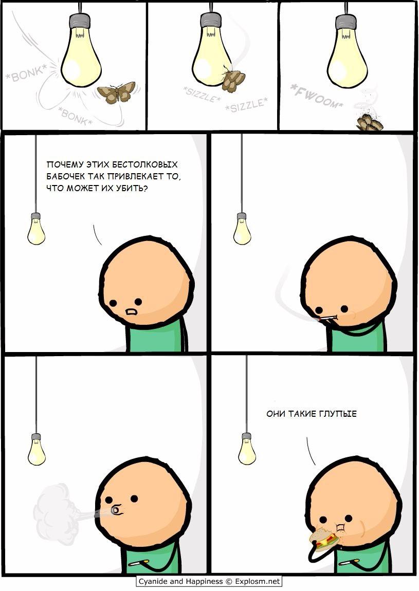 Глупые насекомые