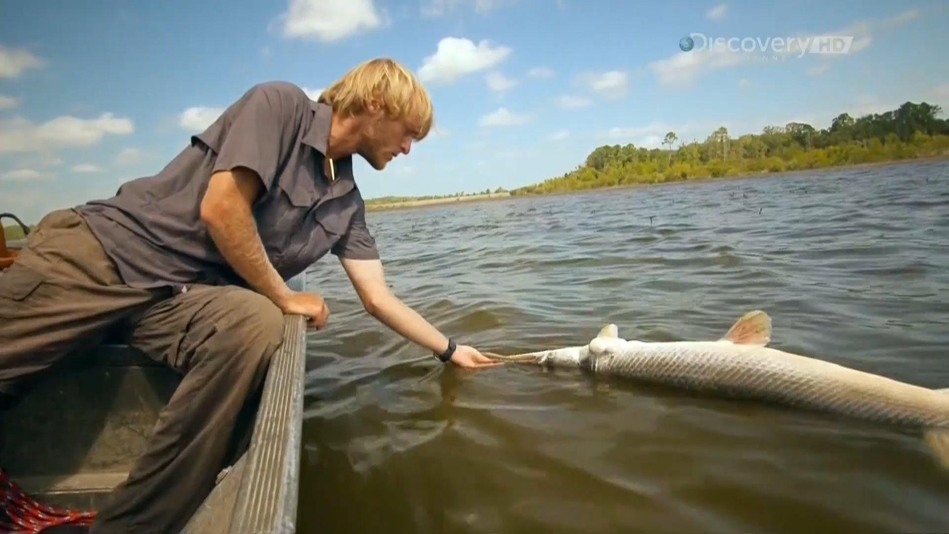 Discovery. Рыбацкие легенды Якуба Вагнера / Rybi Legendy Iakuba Vagnera (2 сезон: 1-6 серии из 6) (2013-2014) HDTV 1080i