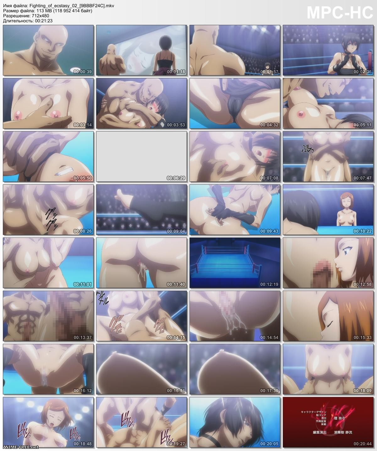Экстаз борьбы / Fighting of Ecstasy [2 из 2] [RUS,ENG,JAP,GER] Anime Hentai