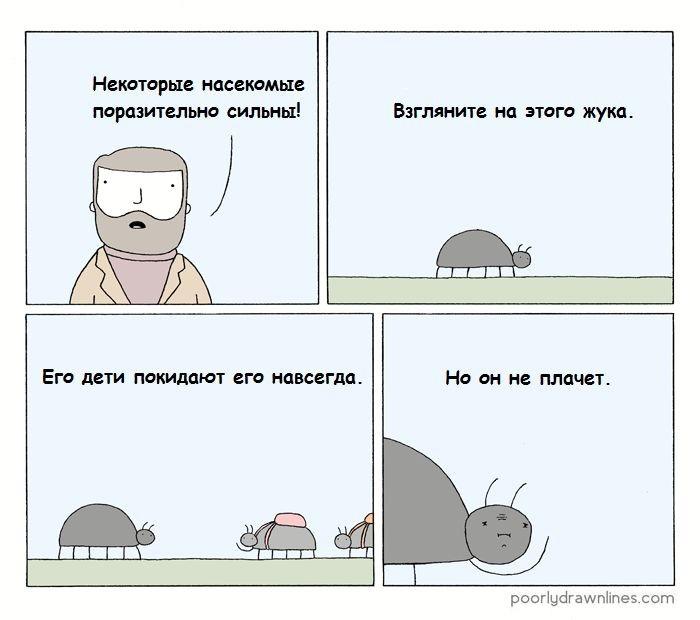 Сильные насекомые