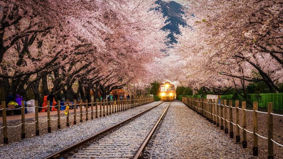 Японский трамвайчик
