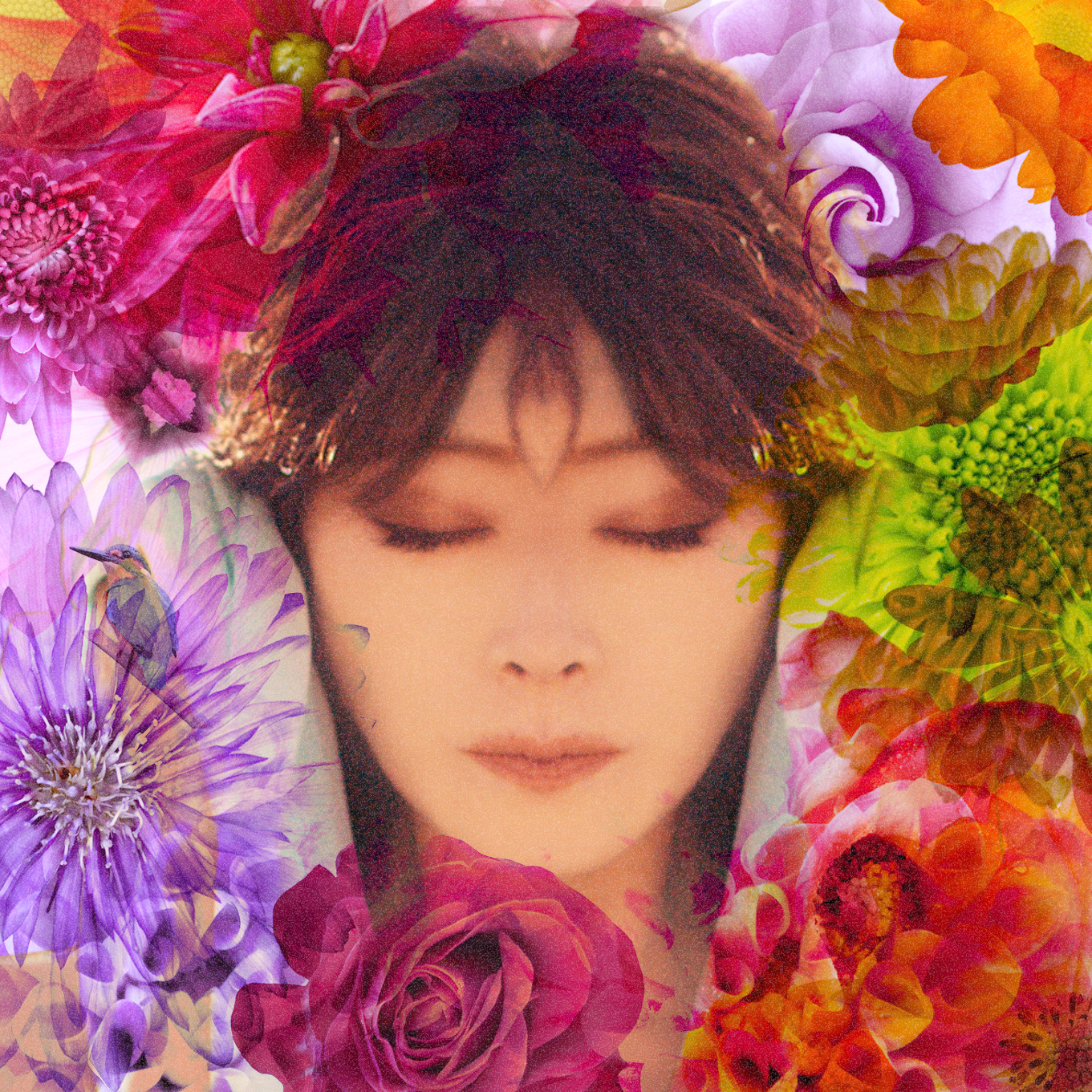 20160107.04.1 Akina Nakamori - Fixer (M4A) cover 2.jpg