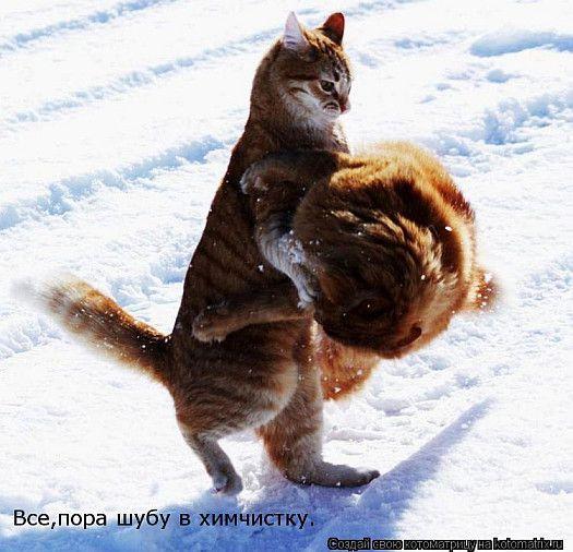 http://i1.imageban.ru/out/2016/01/19/b2840ee557c3b17f106d7efbf16c2447.jpg