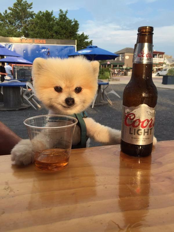 Стаканчик пива