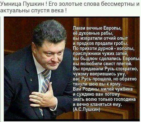 http://i1.imageban.ru/out/2016/03/07/d88e105ea50ec5e6fa4dbce68a70f18e.jpg