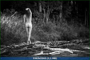 http://i1.imageban.ru/out/2016/04/09/d4b4f24421cb9ac3e4f8ab228084b8f2.png