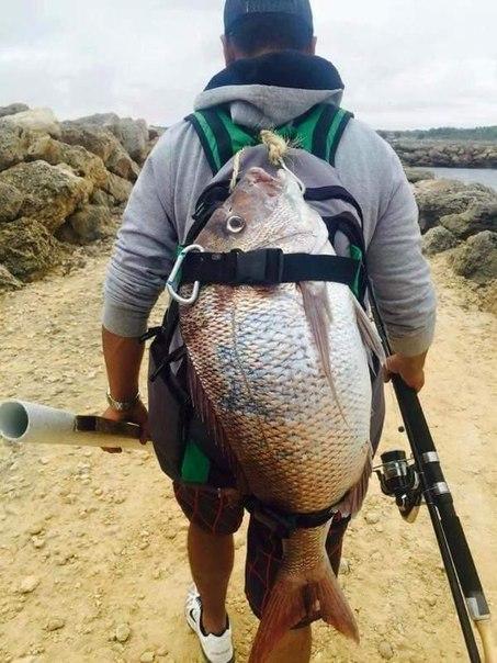 Поймал всего одну рыбку 1