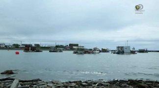 Discovery. Золотая лихорадка. Берингово море / Bering Sea Gold [S05] (2015) HDTVRip от HitWay | P