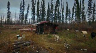 Discovery. Последние жители Аляски / The Last Alaskans [S02] (2016) HDTVRip от HitWay | P1