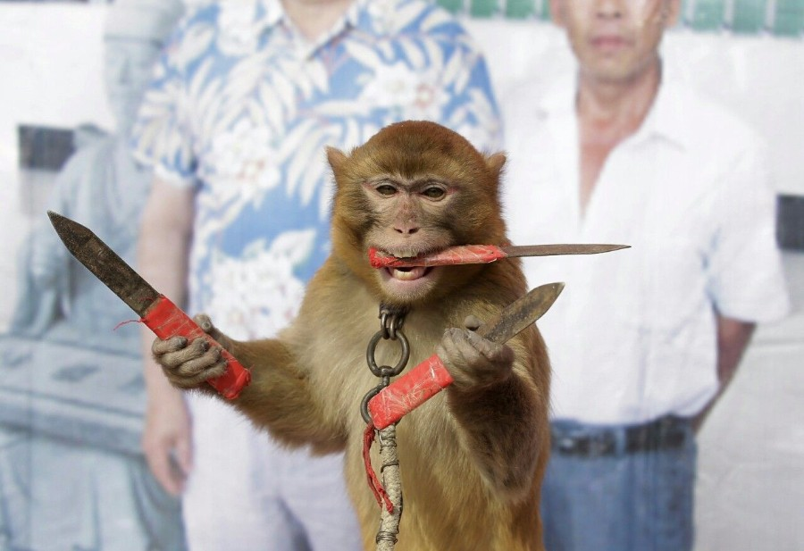 Обезьянка-жонглер