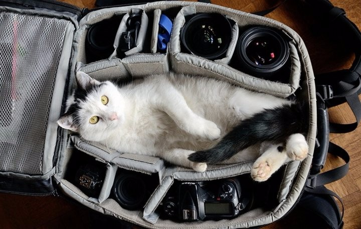 Главный инструмент фотографа
