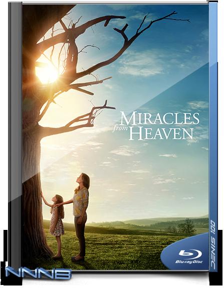 Чудеса с небес   › Торрент