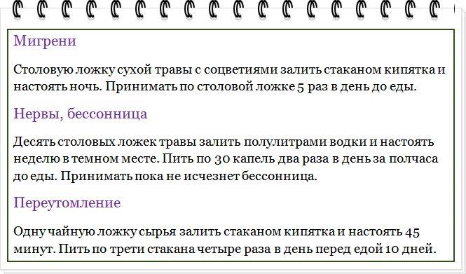 http://i1.imageban.ru/out/2016/08/07/eb69bc69f8e814ceb6fe2fe9bedbd34e.jpg