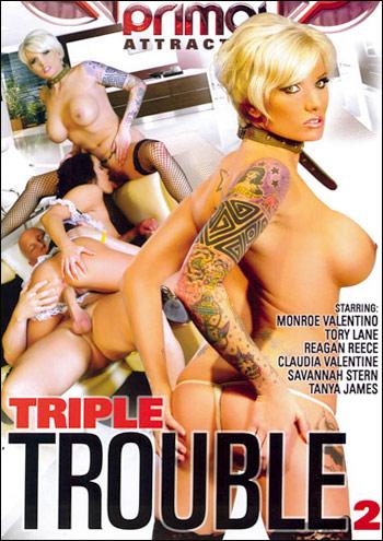Тройная проблема 2 / Triple Trouble 2 (2011) DVDRip