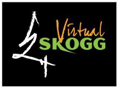 Michael Skogg | Virtual Skogg: Kettlebell Classes 41 - 60 (2018) HDTVRip [H.264/720p-LQ] [EN]